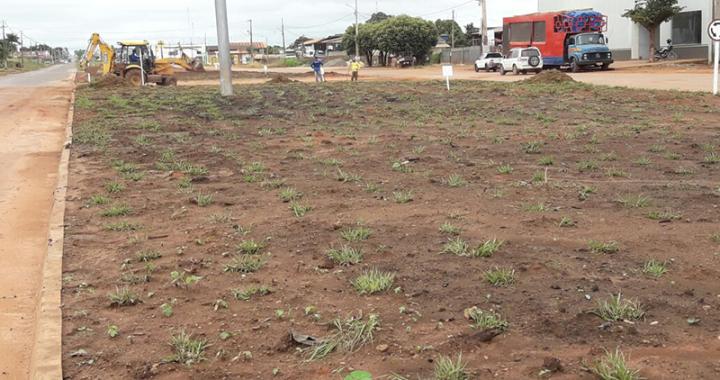 Secretaria de Infraestrutura realiza plantio de grama em canteiro da Avenida JK