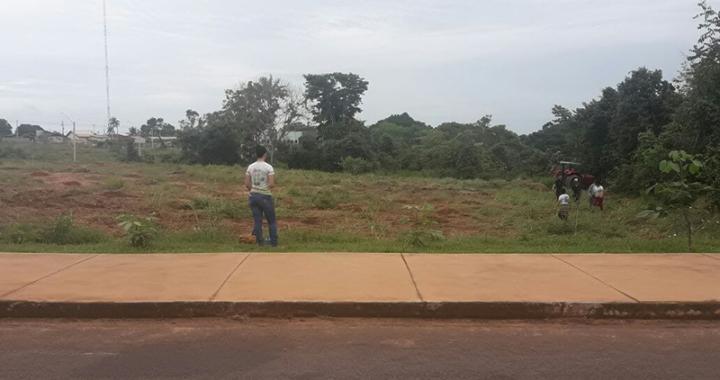 Secretaria de Agricultura e IFMT realizam reflorestamento no entorno do Lago da Garça