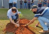 Ação em comemoração ao Dia da Árvore